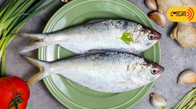 The story and perception about Hilsa fish in Bengal
