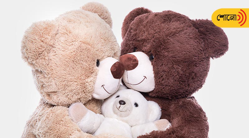 Story behind the birth of Teddy Bear: connection with President Roosevelt