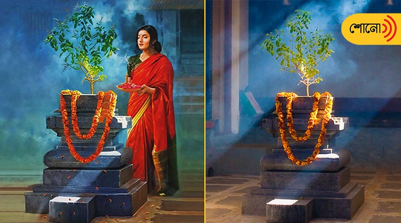 vastu-tips: Planting Tulsi in these directions produces positive energy in the house