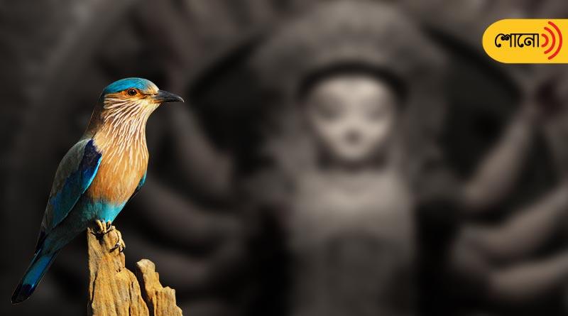 Durga Puja 2021: Ritual of Nilkantha Bird in Durga Puja